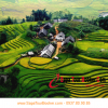 2015 Sapa summer tours