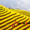 Sapa and Remote Villages Experience